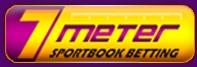logo 7meter